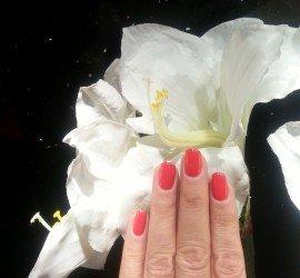 Stylizacje-paznokci